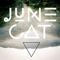 June Cat image