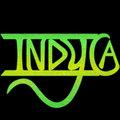 Indyca image
