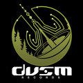 DVSM Records image