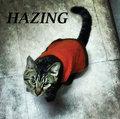 Hazing image