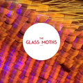 The Glass Moths image
