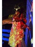 Violinda image