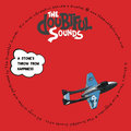 The Doubtful Sounds image
