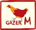 Gazer M image