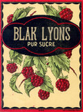 Blak Lyons image