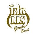 The Big Lis Gumbo Band image