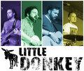Little Donkey image