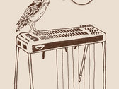 Owl & Pedal Steel T-Shirt (Cream) photo
