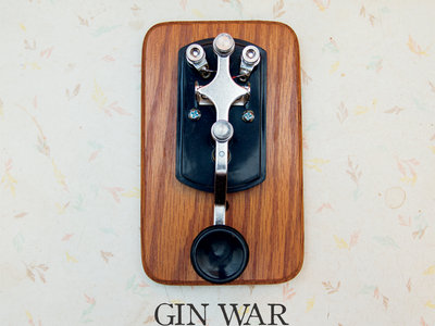 GIN WAR - HALF OF A GOOD PLAN (CD) main photo