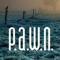 P.A.W.N. image