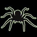 Spiderbites image