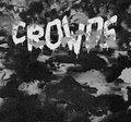 CROWDS image