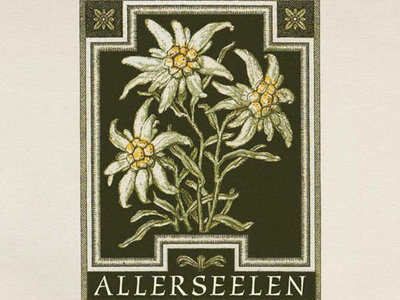 Allerseelen girlie shirt / T-shirt Edelweiss - please order via: aorta.mail.order (at) gmail.com main photo