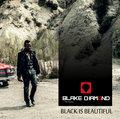 Blake Diamond and The Pearls image