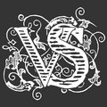 Virgin Spring Publishing image