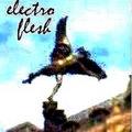 Electroflesh image