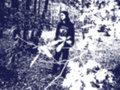 Nehalennia image
