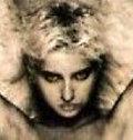 Renardsurleweb image