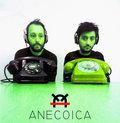 anecoica image