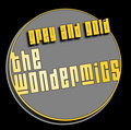 The WonderMics image