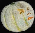 Bender Melon image