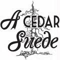 A Cedar Suede image