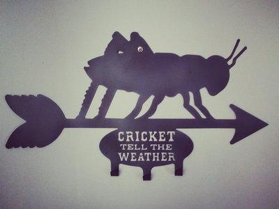 Cricket Weathervane Wall Hanger main photo