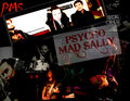 Psycho Mad Sally image