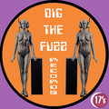 DIG THE FUZZ Records image