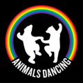 Animals Dancing image