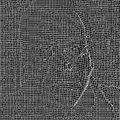Cylob image