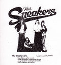The Sneakers image