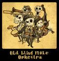 Old Blind Mole Orkestra image