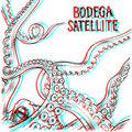Bodega Satellite image
