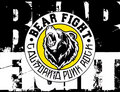 Bear Fight image