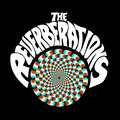 The Reverberations image