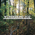 WonderKind 202 image