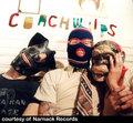 Coachwhips image