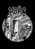 Roac image