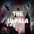 THE IMPALA image