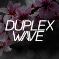 Duplex Wave image