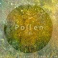 pollen Rec image