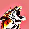 El Tigr3 image