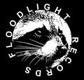 Floodlight Records image