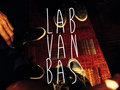 Labrador Van Basten image