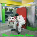The Laundry Room image
