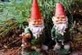 Gnome Hunters image