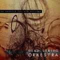 Dead String Orkestra image