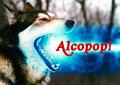Alcopop! Records image