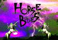 Horse Bodies image